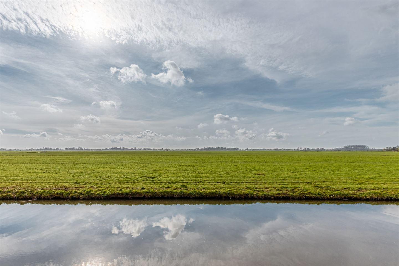 Bekijk foto 7 van Meeuwenveld 7