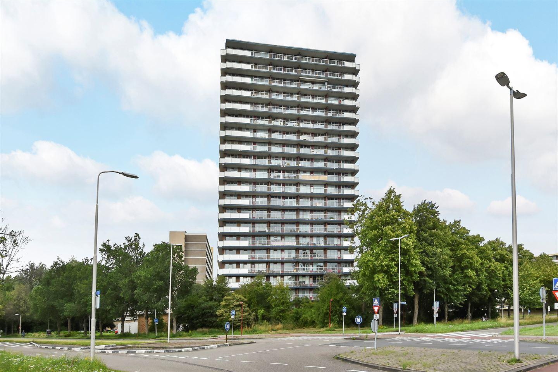 Bekijk foto 1 van Dunantstraat 1373
