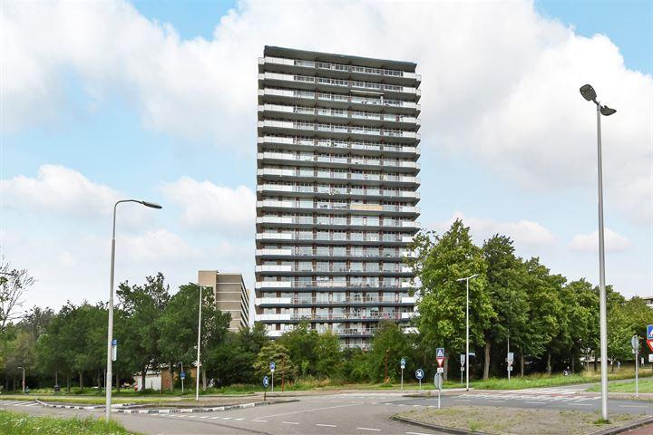 Dunantstraat 1373