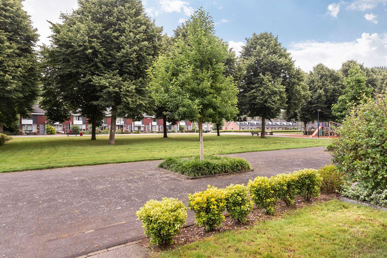 Bekijk foto 2 van De Morinel 244