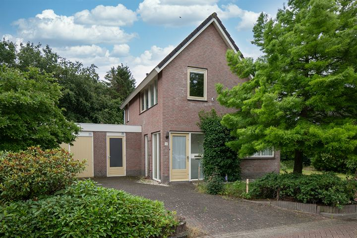 Domela Nieuwenhuisstraat 49