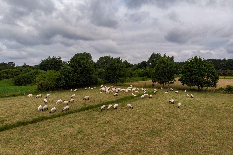 View photo 4 of Dijkhuizerzandweg 14
