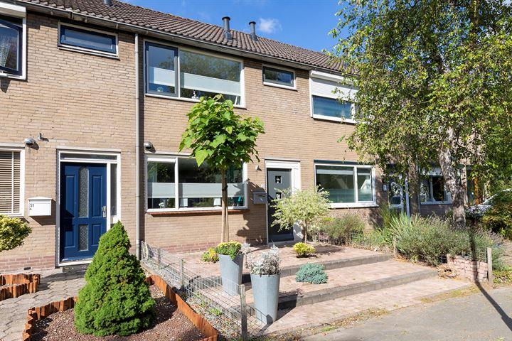 Van Vlaanderenstraat 53