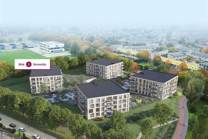 Couperuspark - Blok 2 Hermelijn