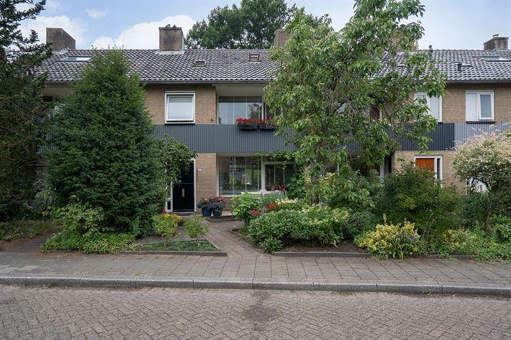 Robijnstraat 45