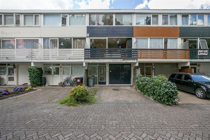 Obrechthof 36