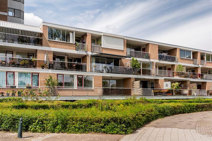 Essenburg 64