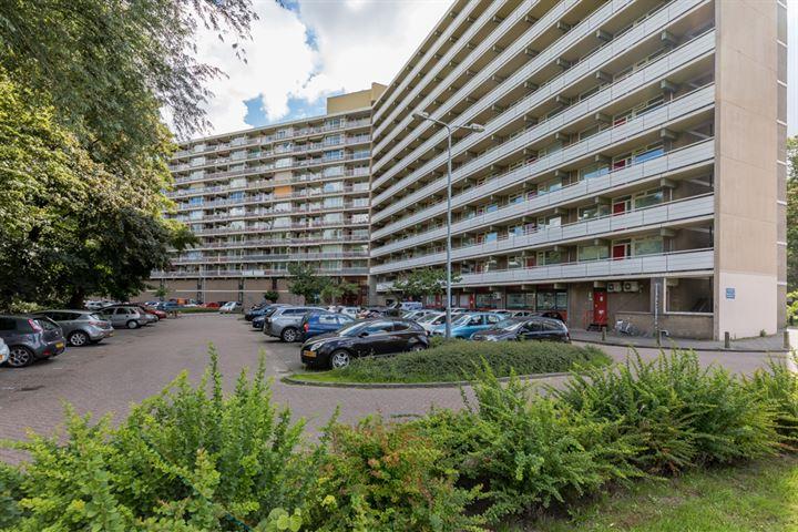 Dunantstraat 963
