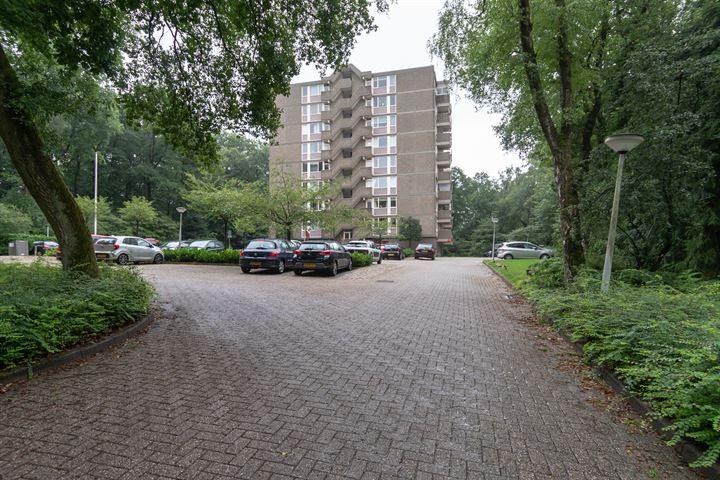 Koningsberg 43