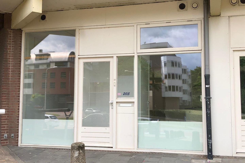 Bekijk foto 1 van Kronenburgersingel 205