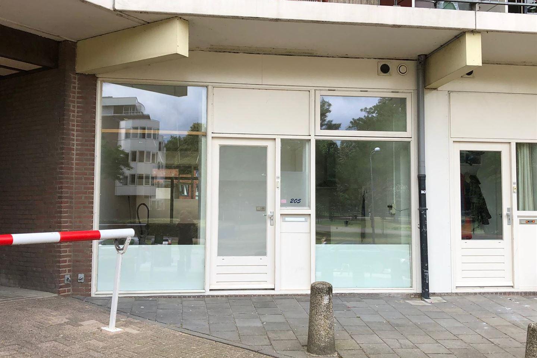 Bekijk foto 2 van Kronenburgersingel 205