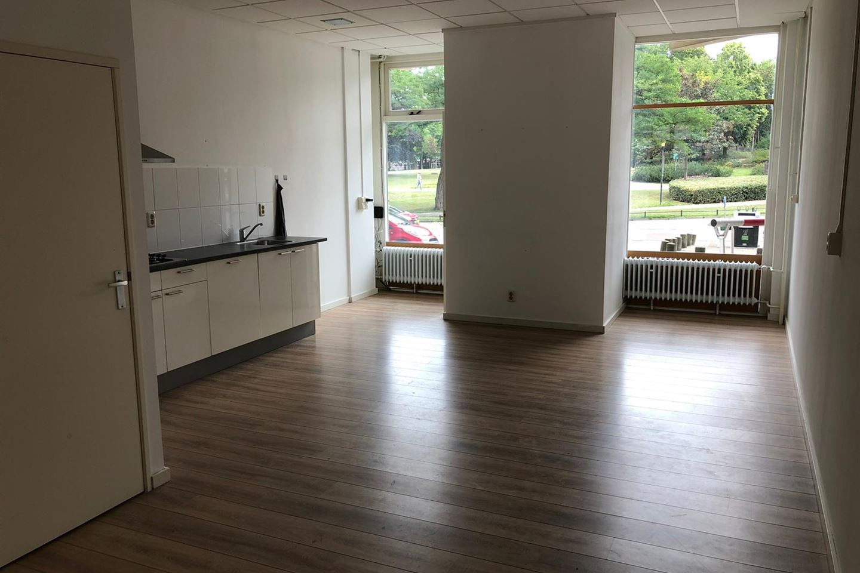 Bekijk foto 5 van Kronenburgersingel 205