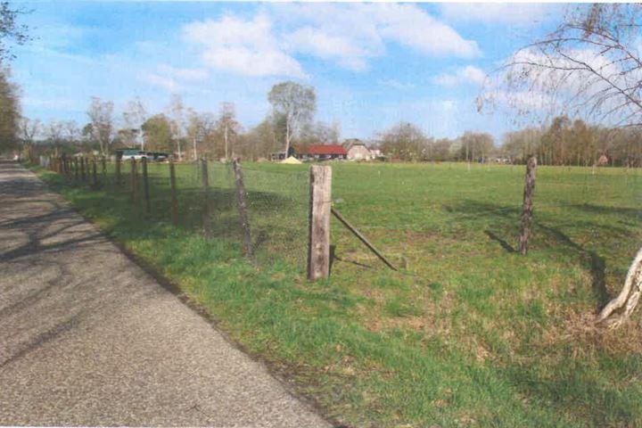Groeneveltweg, Wenum Wiesel