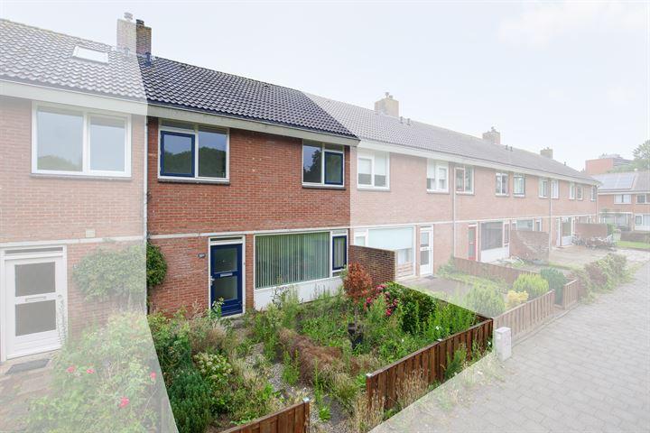 Meijhorst 5024