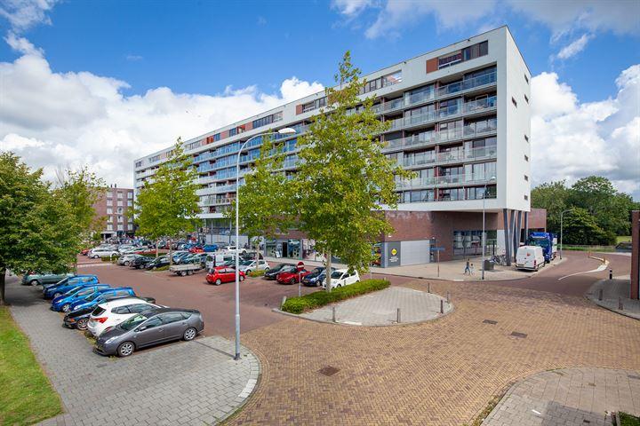 Johan van Reigersbergstraat 153