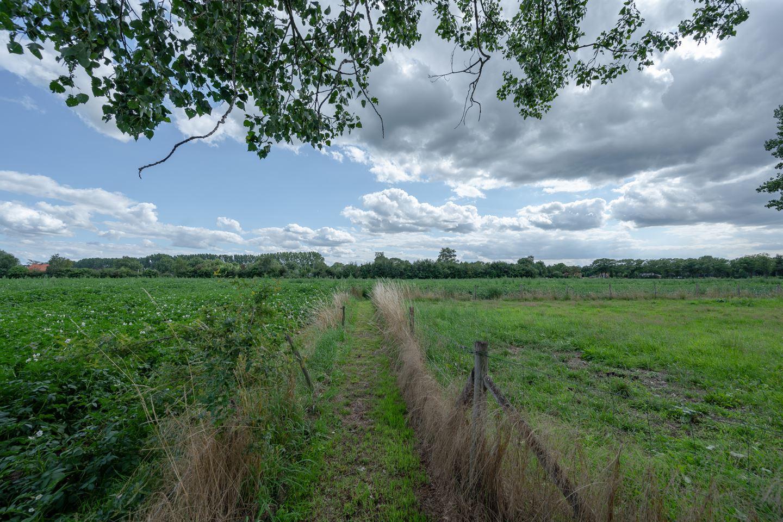 Bekijk foto 3 van Hambroekweg 4