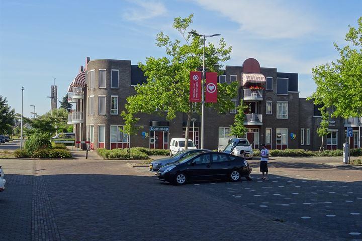 Burgemeester Buskensstraat 50