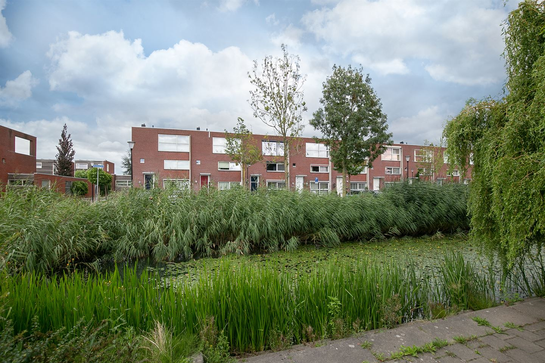 Bekijk foto 2 van Zalmwater 171