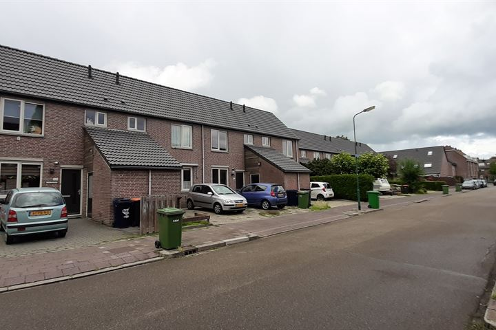 Soest, Turfstreek, Zonnedauw, Wollegras, Lisdodde - Type C