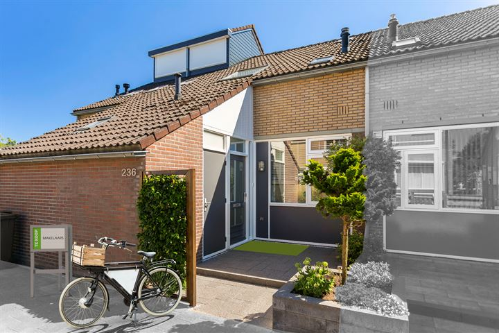 Helmondstraat 236