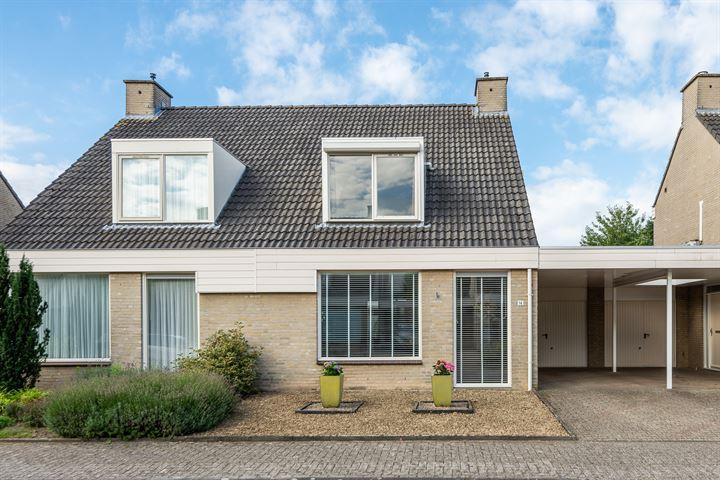 Haag 14