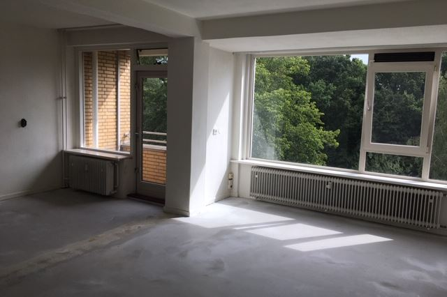 Bekijk foto 2 van Karel Doormanlaan 125