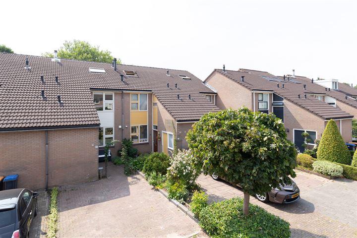 Sternhof 18