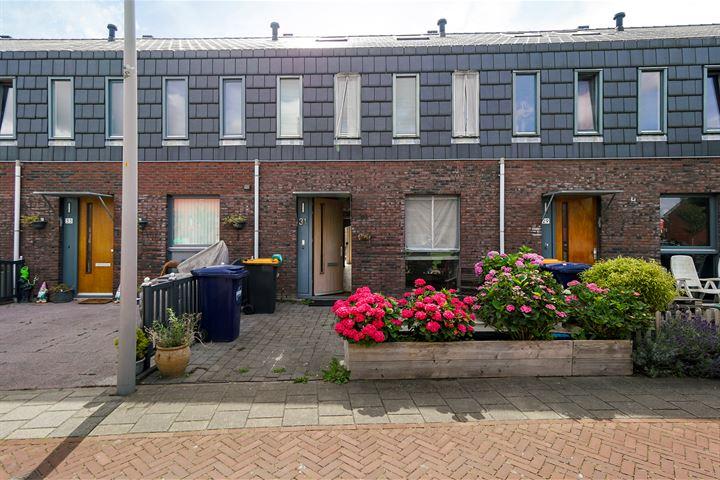 Willem Hanegraaflaan 31
