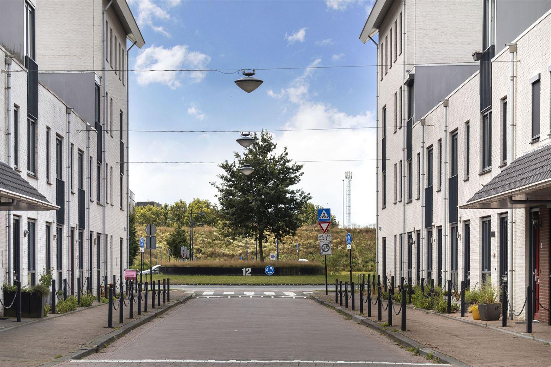 Bekijk foto 2 van Schapendriest 6