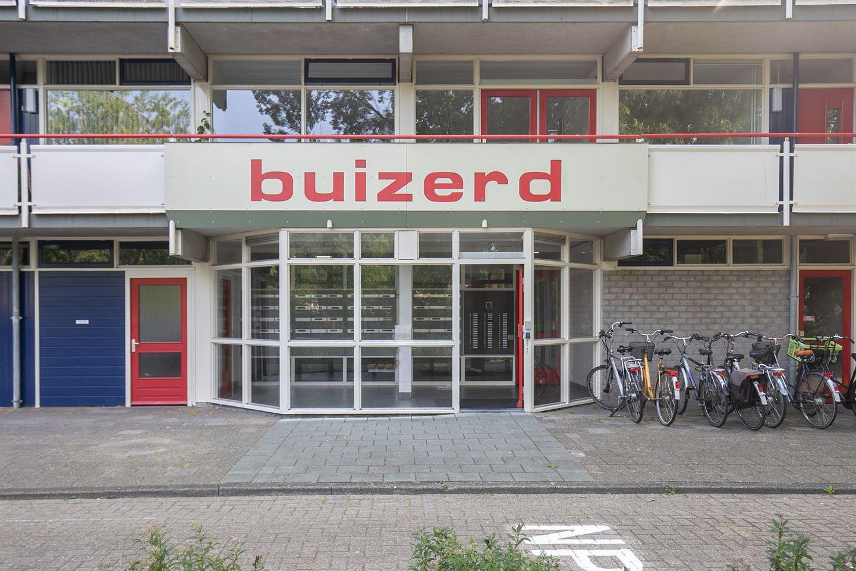 Bekijk foto 3 van Buizerd 11