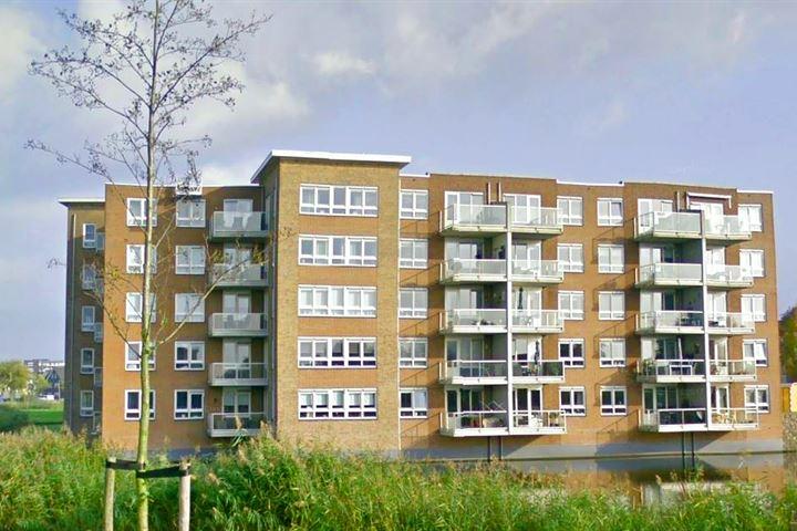 Cederhout 113
