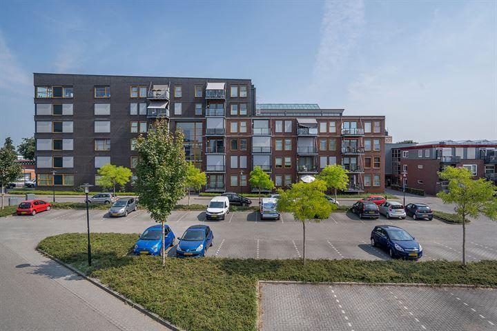 Ravelijn 306