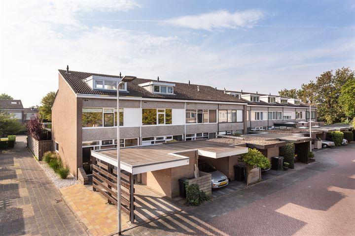 Ridderhof 29