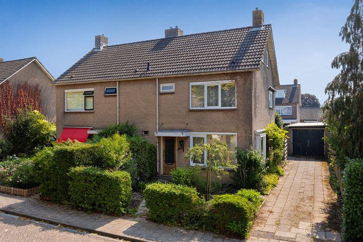 Duindoornstraat 24
