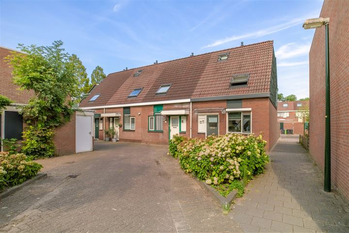 Ravelijn 61