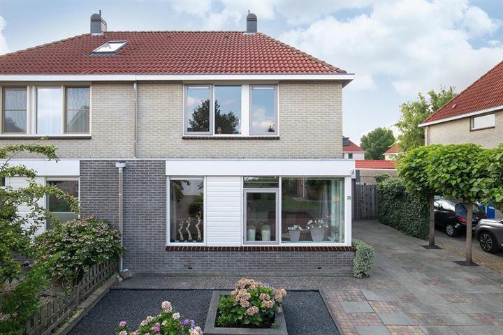 Domela Nieuwenhuisstraat 38