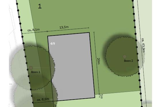 Bekijk foto 1 van Esseboom 2 01