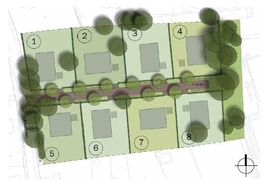 Bekijk foto 2 van Esseboom 2 04