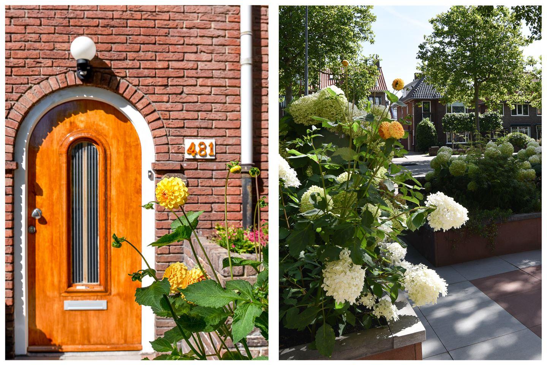 Bekijk foto 4 van Rijksstraatweg 481