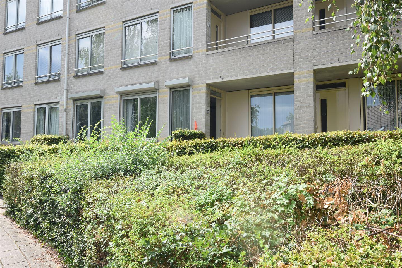 Bekijk foto 3 van Wageningseberg 10