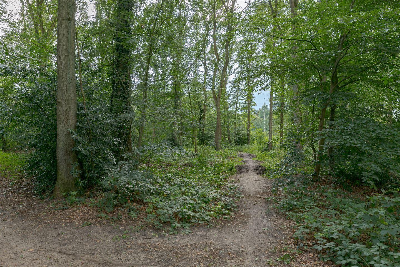 Bekijk foto 3 van Randweg 68