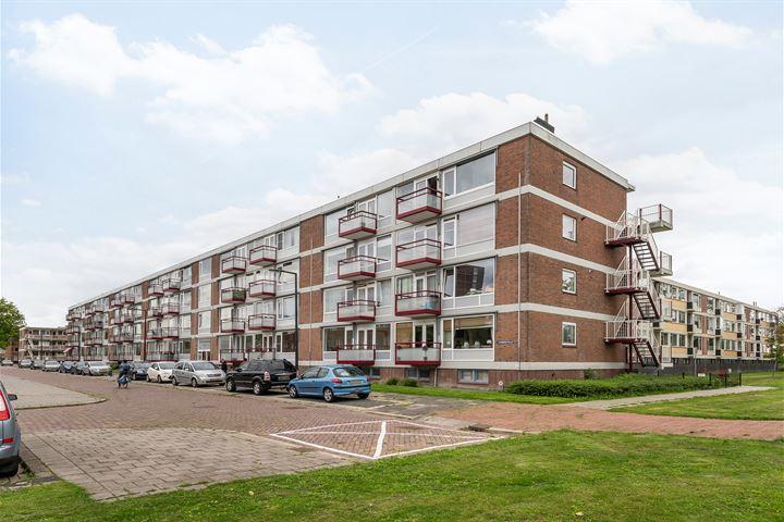 van Viandenstraat 21