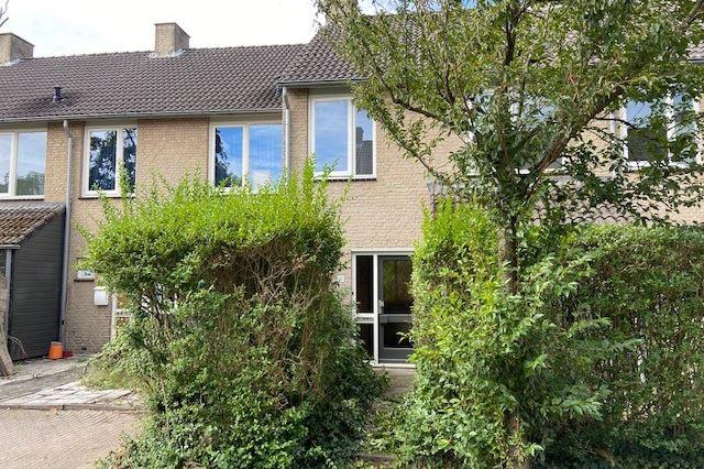 Bekijk foto 2 van Soevereinhof 19