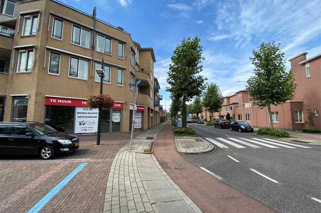 Bekijk foto 3 van Mr.Eenhuisstraat 21