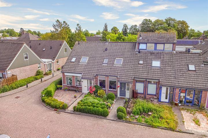 Langeland 25