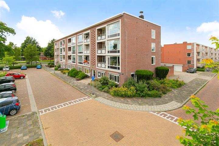 Van Leeuwenhoekstraat 29