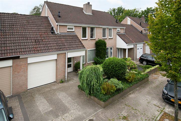 Picardiehof 6