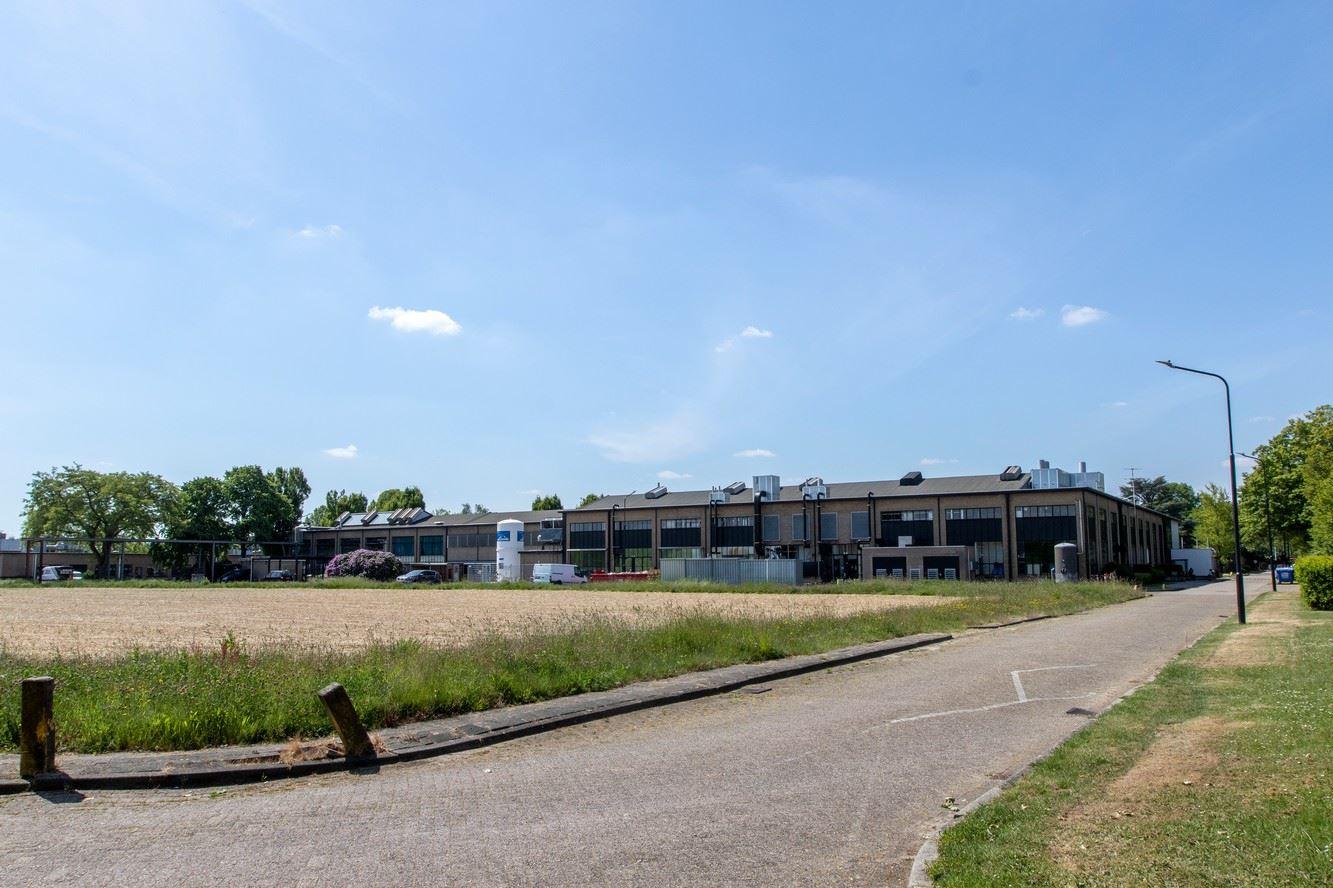 Bekijk foto 3 van Jan Campertstraat 5