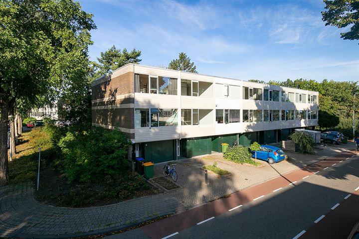 Hogerhorst 103