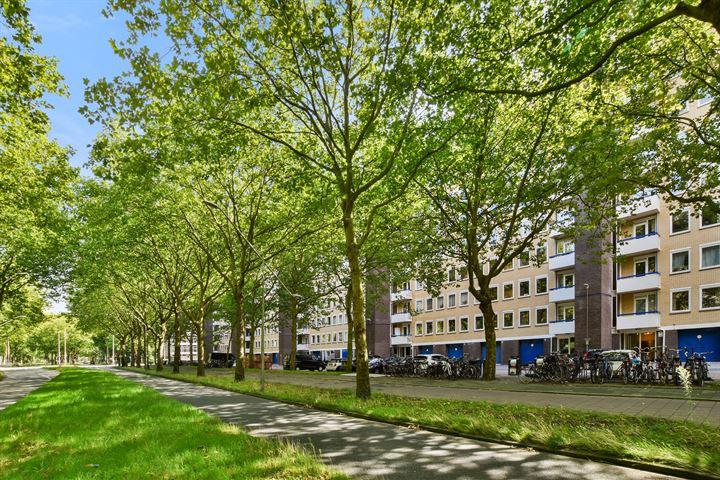 Van Nijenrodeweg 387